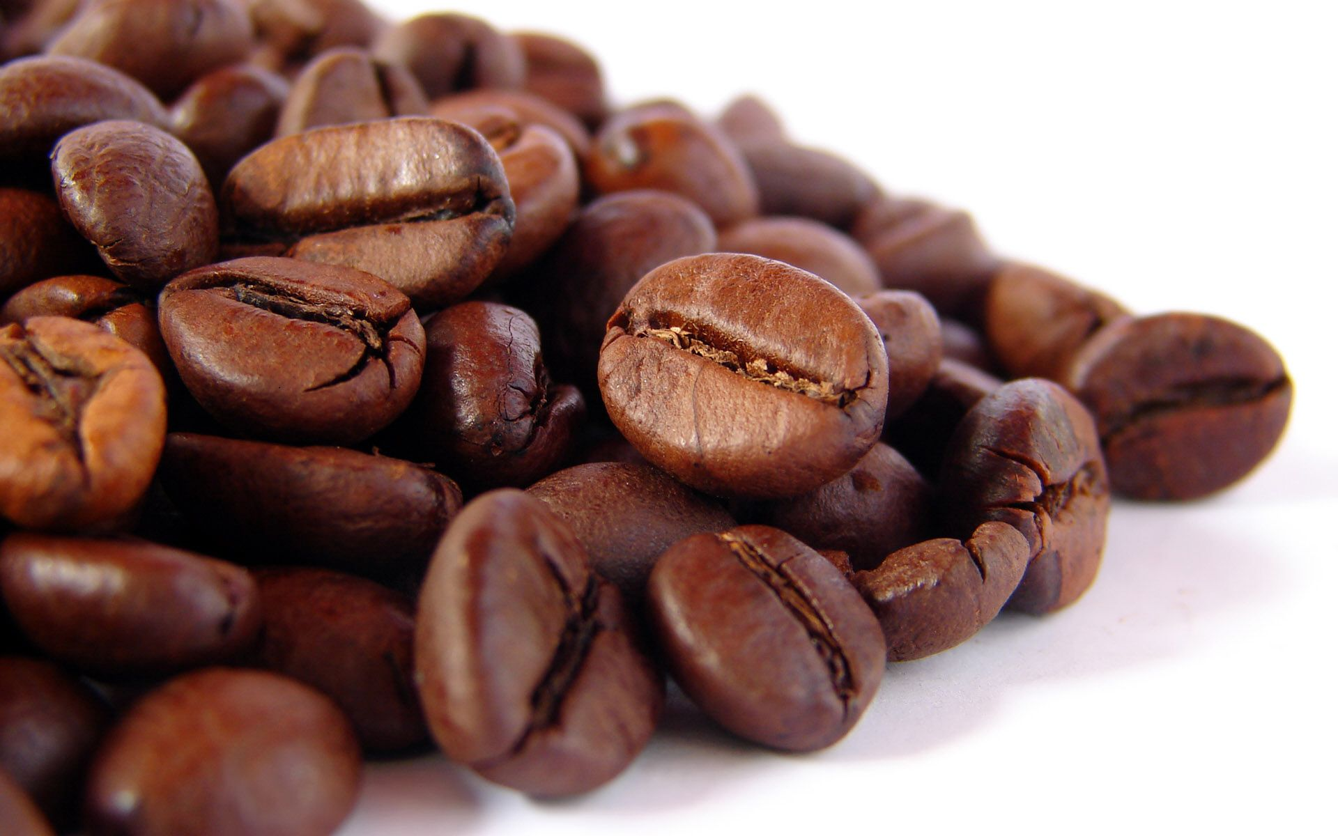 Roasted Robusta coffee bean